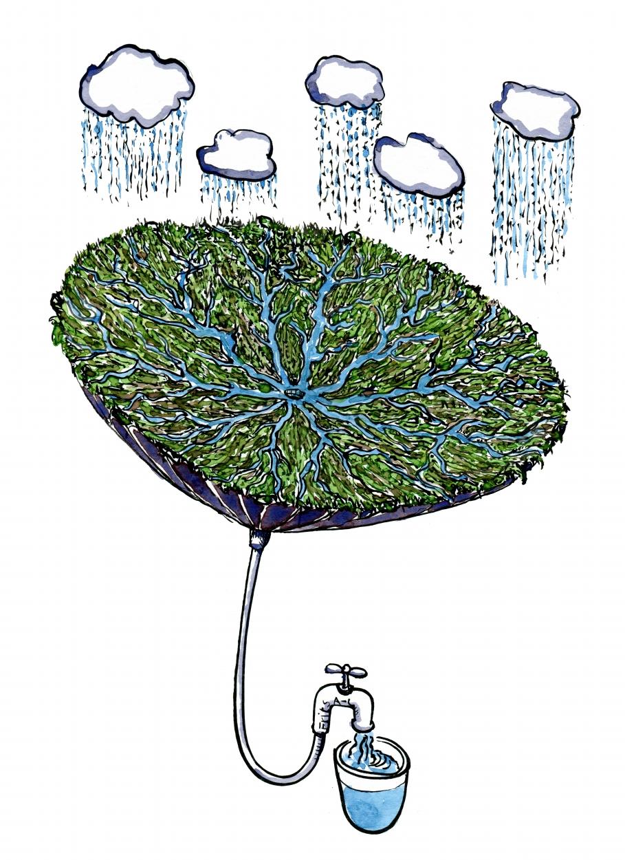 Grøn omvendt paraply tegning, med vandpost i skaftet
